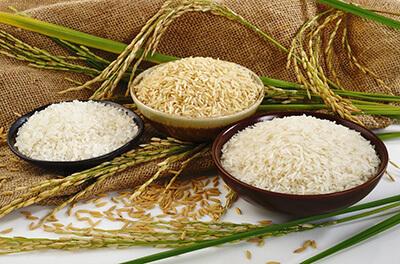 راههای تشخیص برنج ایرانی اصل  تشخیص برنج ایرانی اصل از روی ظاهر